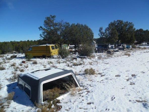459 Hardrock Rd., Seligman, AZ 86337 Photo 42