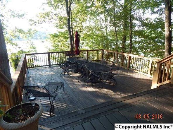 3691 County Rd. 104, Cedar Bluff, AL 35959 Photo 10