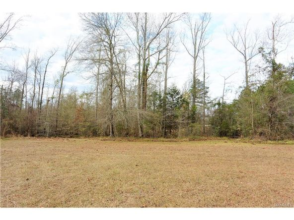 118 Old Colley Rd., Eclectic, AL 36024 Photo 57
