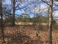 Home for sale: 3.75 Ac Abound Rd., Piedmont, SC 29673