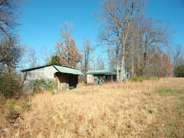 1059 Pleasant Run Rd., Mammoth Spring, AR 72554 Photo 15