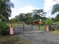 Home for sale: 16-1752 Keaau Pahoa Rd., Kurtistown, HI 96760