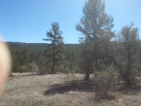 Home for sale: Lot 13 N. The Preserve On Haigler Creek Land N, Young, AZ 85554