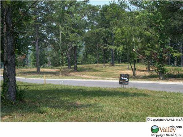 115 Lake Creek Dr., Guntersville, AL 35976 Photo 6