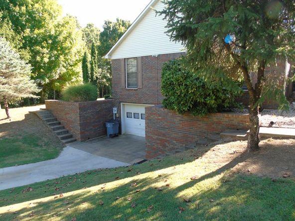 3629 Cr 50, Rogersville, AL 35652 Photo 4