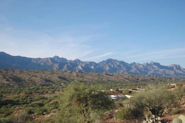 16409 N. Lago del Oro, Tucson, AZ 85739 Photo 10