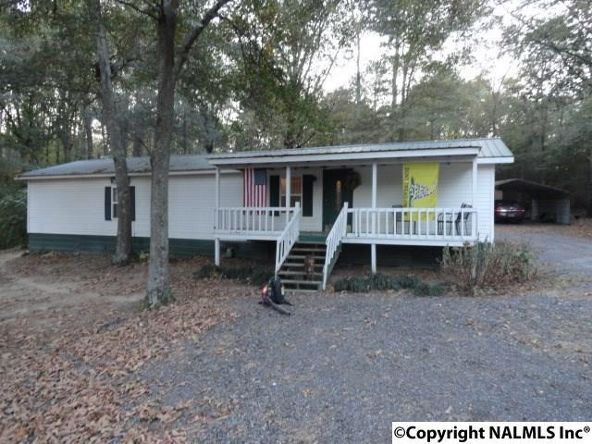 211 Dawson Rd., Fyffe, AL 35971 Photo 1