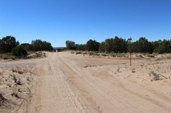 7209 N. Hwy. 191 --, Sanders, AZ 86512 Photo 17