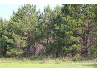 Home for sale: Lot 21 Chesson Hill Dr., Fitzpatrick, AL 36029