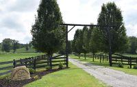 Home for sale: 1755 Big Dry Creek Rd., Pulaski, TN 38478