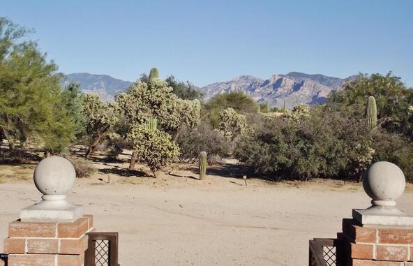 10151 N. Orange Ranch, Tucson, AZ 85742 Photo 82