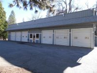 Home for sale: 25458 Hwy. 88, Pioneer, CA 95666