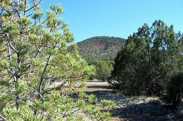 7217 N. Audrey Way, Williams, AZ 86046 Photo 16