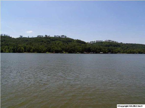 1120 County Rd. 165, Cedar Bluff, AL 35959 Photo 3