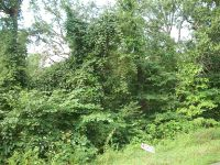 Home for sale: Lot 10 Cortaire Dr., Auburn, KY 42206