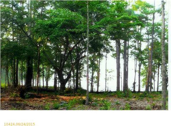 767 Lakeview Crest Dr., Pell City, AL 35128 Photo 5