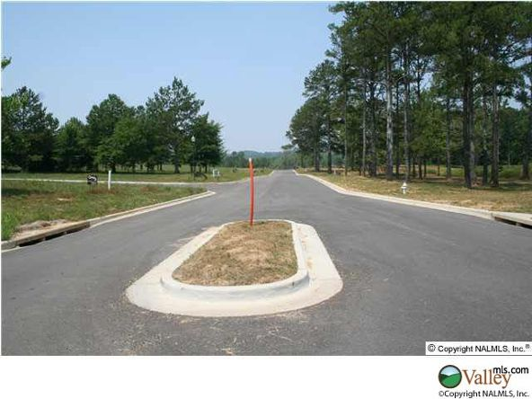 111 Lake Creek Dr., Guntersville, AL 35976 Photo 24