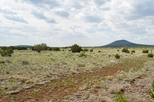 7508 N. Elk Run Trail, Williams, AZ 86046 Photo 55