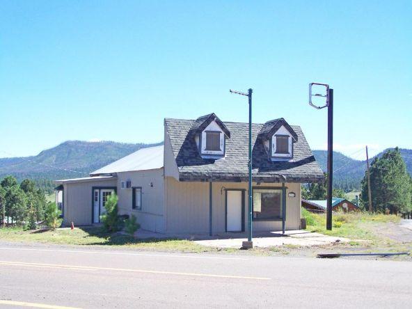 24680 Hwy. 180, Alpine, AZ 85920 Photo 2