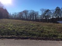 Home for sale: Lot 16 Gallaher View Dr., Kingston, TN 37763