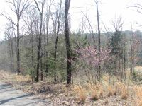 Home for sale: Greers Ferry, AR 72067