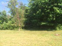 Home for sale: 667 Bending Brook Dr., Flushing, MI 48433