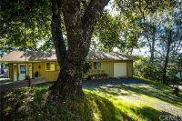 Home for sale: 3278 Atholl Rd., Lucerne, CA 95458
