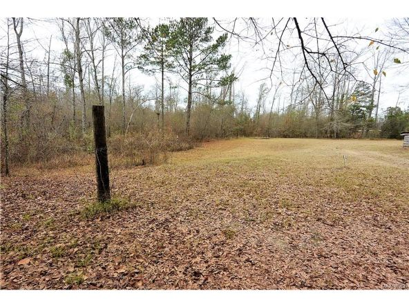 118 Old Colley Rd., Eclectic, AL 36024 Photo 48