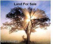 Home for sale: Iris, Opelousas, LA 70570