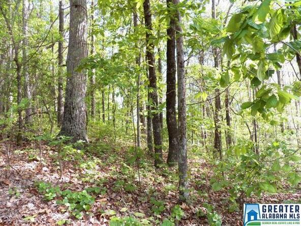 104 Peak Dr., Weaver, AL 36277 Photo 4