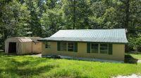 Home for sale: 70 Nordan Dr., Springville, TN 38256