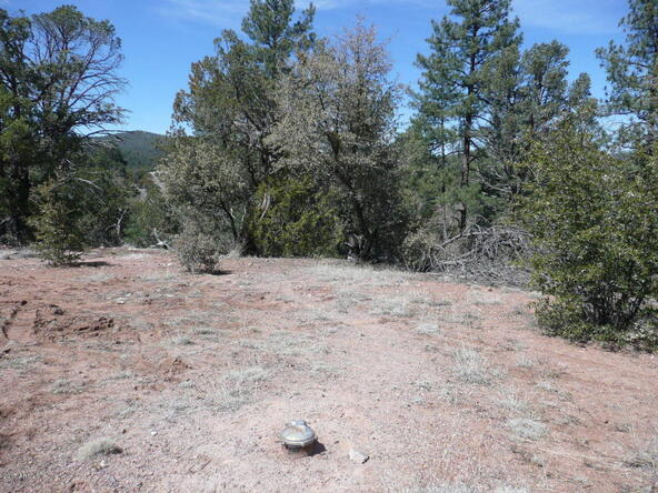 8b N. Chamberlain Trail, Young, AZ 85554 Photo 18