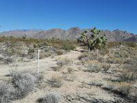 Home for sale: 0000 Boriana Mine Rd., Yucca, AZ 86438