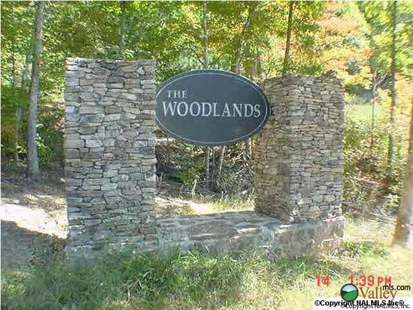805 Lakewood Dr., Fort Payne, AL 35967 Photo 2