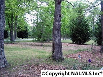 10150 County Rd. 103, Mentone, AL 35984 Photo 25