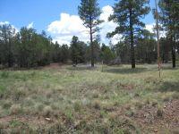 Home for sale: 1521 Black Forest Ln., Pinedale, AZ 85934
