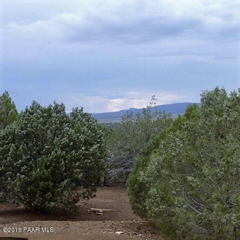 54800 N. Echo Ln., Seligman, AZ 86337 Photo 1