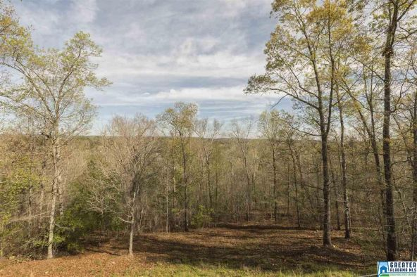 799 Hidden Ridge, Chelsea, AL 35043 Photo 16