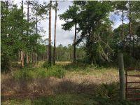Home for sale: 1565 Hwy. 67, Carrabelle, FL 32322