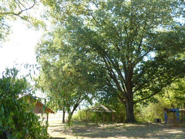 3221 County Hwy. 25, Guntersville, AL 35976 Photo 6