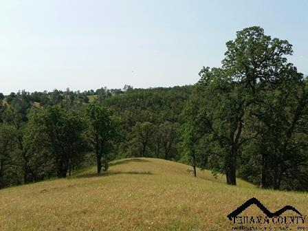 613 Hwy. 36 West, Red Bluff, CA 96080 Photo 33