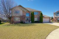 Home for sale: 8919 Fairfield Ln., Tinley Park, IL 60487