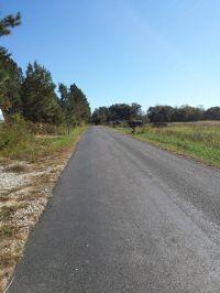 Home for sale: Holiday Lake Rd., Appomattox, VA 24522