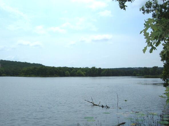 L564 Lake Horizon Ct., Sunset, TX 76270 Photo 3