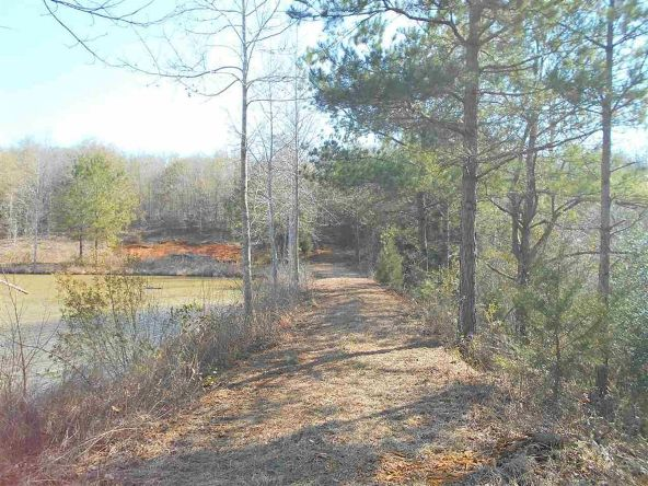 16.9 Acres Private Rd. 1363, Ariton, AL 36311 Photo 23