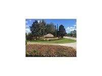 Home for sale: 24041 Milford Dr., Eustis, FL 32736