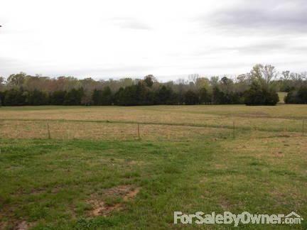 8266 County Rd. 109, Safford, AL 36773 Photo 5