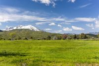 Home for sale: 13 Lots At Whitecloud Ridge, Carbondale, CO 81623