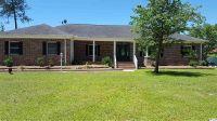 Home for sale: 337 Black Water Loop, Georgetown, SC 29440