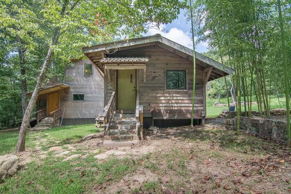 1374 County Rd. 641, Mentone, AL 35984 Photo 4